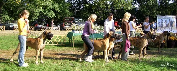 Univers kennel the first place.jpg